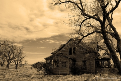 Abandoned (16)