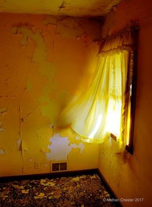 Abandoned (5)