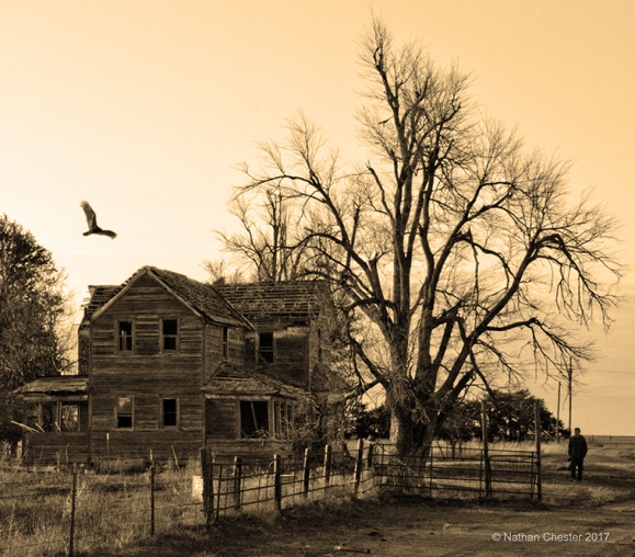 Abandoned (9)